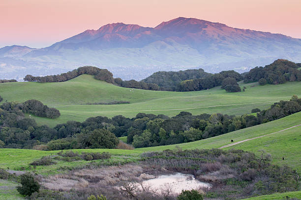 Sunset over Rolling Grassy Hills and Diablo Range of California stock photo