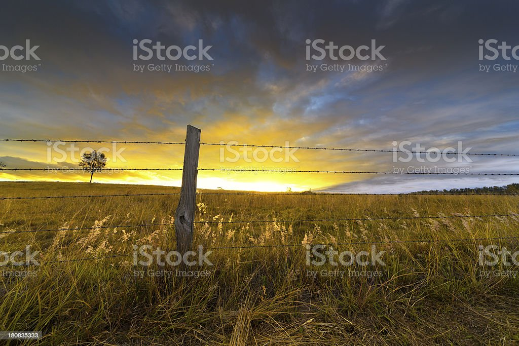 Sunset over rustic fence stock photo