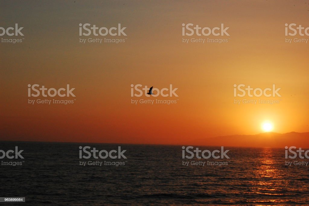 Sunset Over Santa Monica Beach in Los Angeles, CA - Royalty-free Beach Stock Photo