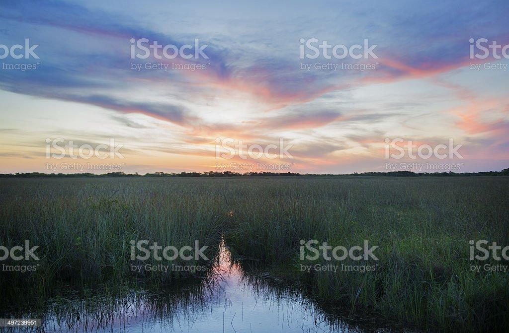 Sunset Over Scenic Everglades National Park Horizon royalty-free stock photo