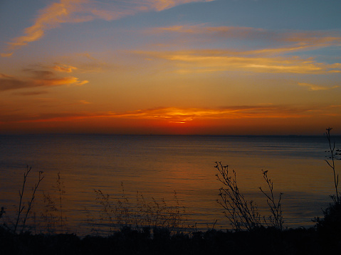 wide angle view of sunset and seascape with a lot of trees branches and clouds on sky for nature landscape view concepts