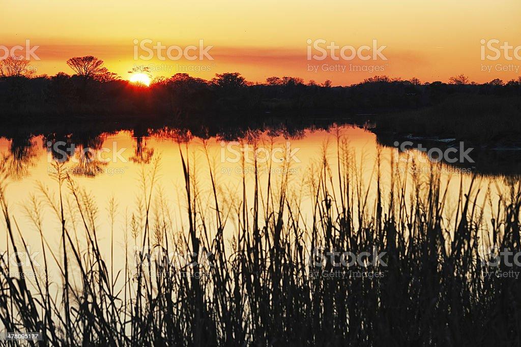 Sunset over Southern USA swamp horizontal stock photo