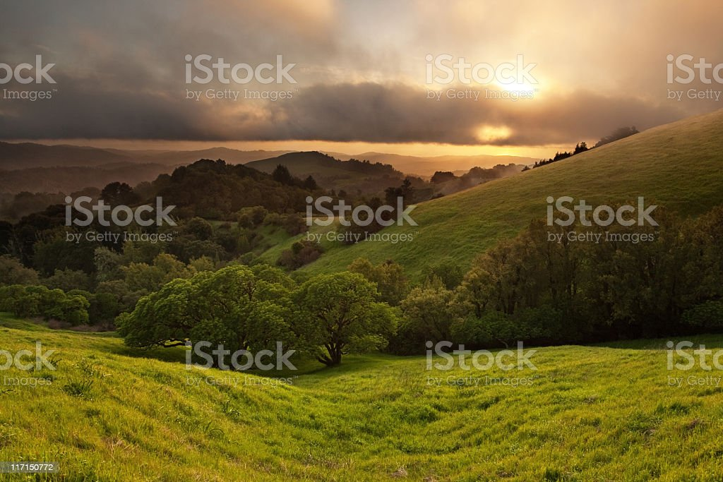 Sunset over Spring Meadow royalty-free stock photo