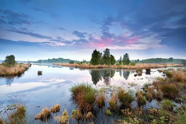 sunset over swamp in Drenthe foto