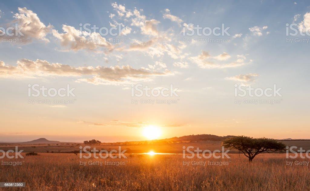 非洲平原落日 - 免版稅倒影湖圖庫照片