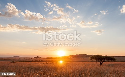 istock Sunset over the African Plains 683812350
