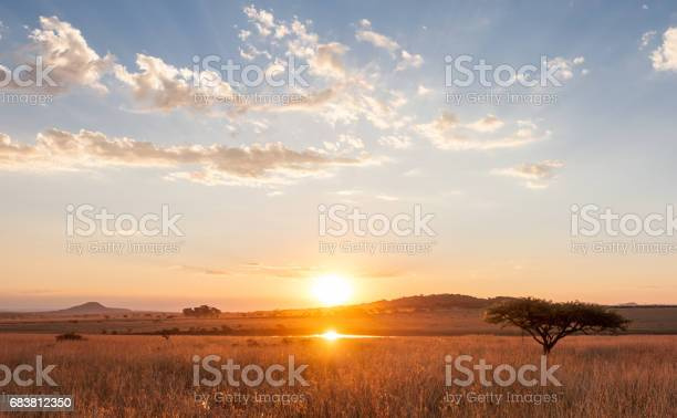 Photo of Sunset over the African Plains