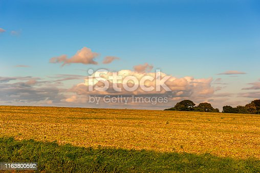 beautiful sunset in Wiltshire - countryside