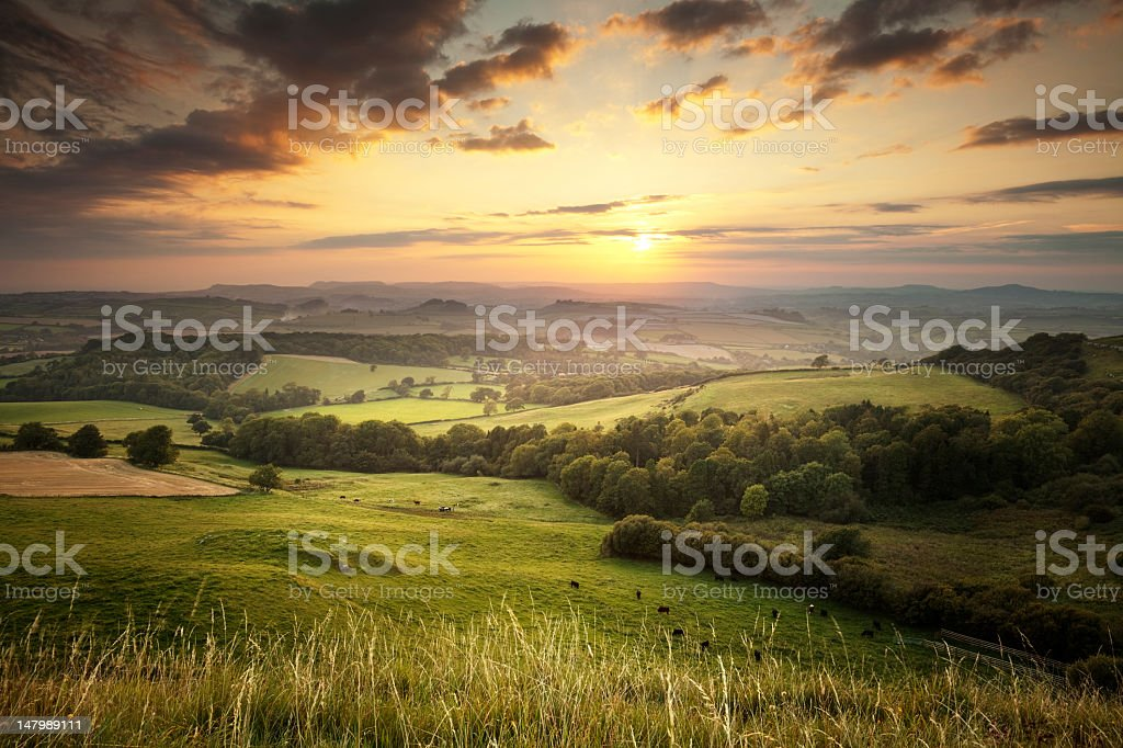 Sunset over the green hills countryside in England, Dorset This is the view west from Eggardon Hill in Dorset, at sunset Agricultural Field Stock Photo