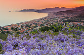 istock Sunset over the Ligurian Sea with wisteria 519678726