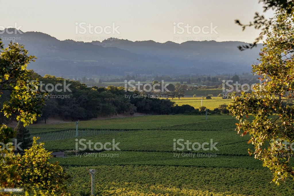 Sunset over the Napa Valley stock photo