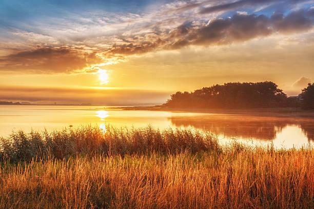 sunset over the northern sea, in sweden. - summer sweden bildbanksfoton och bilder
