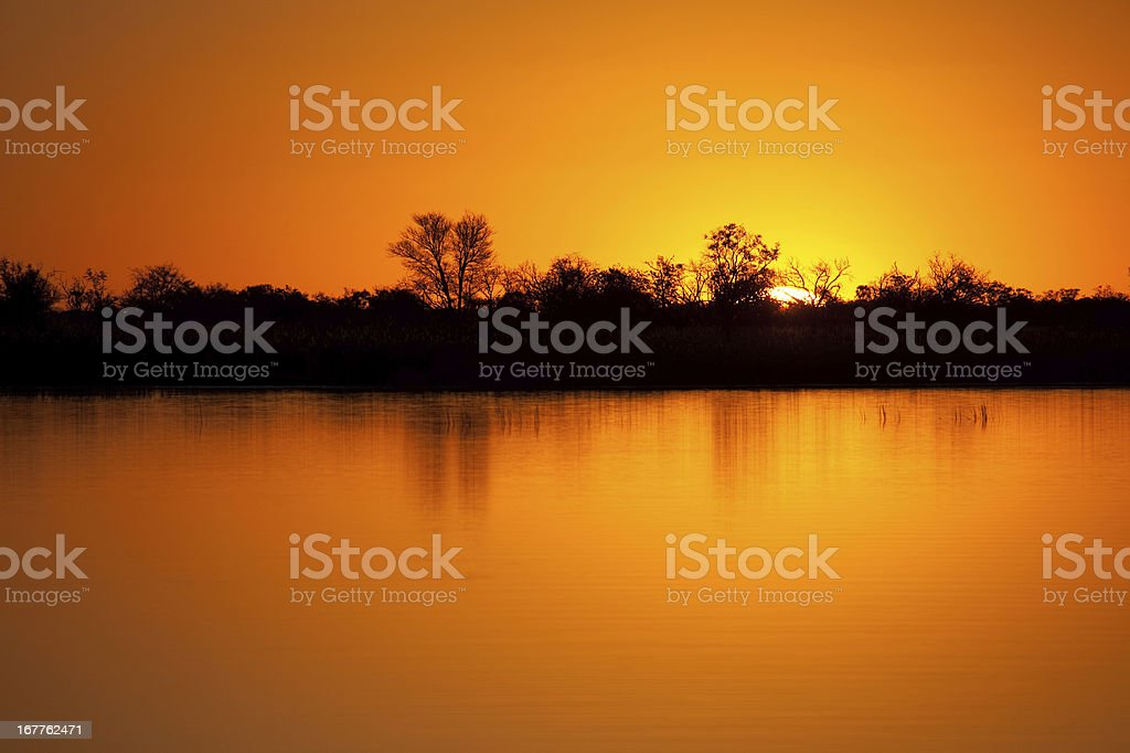 Sunset over the Okavango royalty-free stock photo