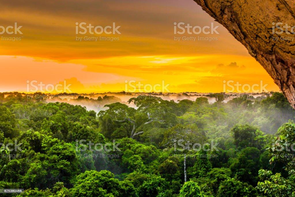 Sunset over the rainforest in Brazil stock photo