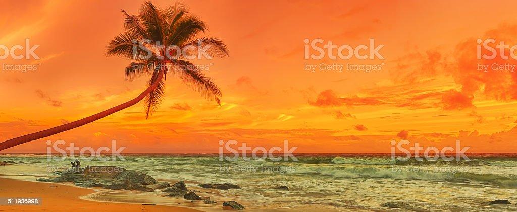 Sonnenuntergang über dem Meer. Panorama – Foto