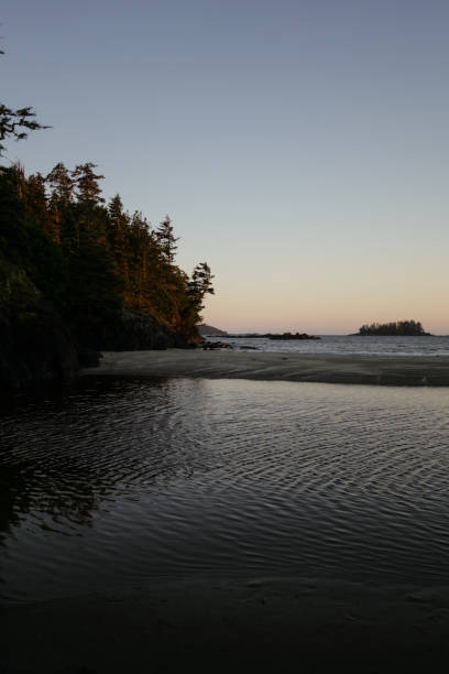 Sunset over the shore in Tofino, Vancouver Island, Canada stock photo