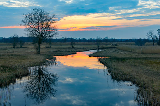 Sunset over the Weerribben-Wieden nature reserve in Overijssel, The Netherlands. - foto stock