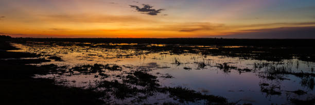 sunset over the wetlands of the mary river flood plain, nt, australia - janet k scott stock pictures, royalty-free photos & images
