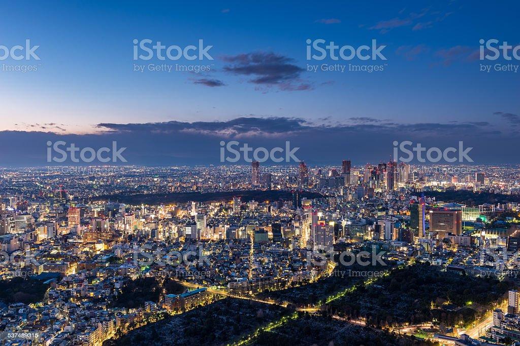 Sunset over Tokyo stock photo