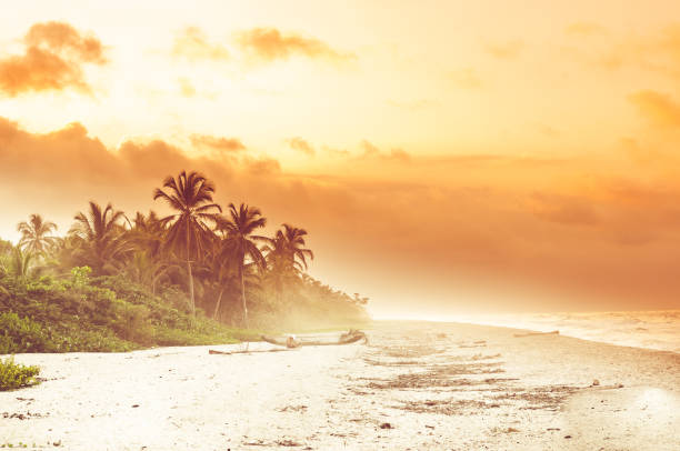 Sunset over tropical beach by Palomino in Colombia View over sunset over tropical beach by Palomino in Colombia palomino stock pictures, royalty-free photos & images