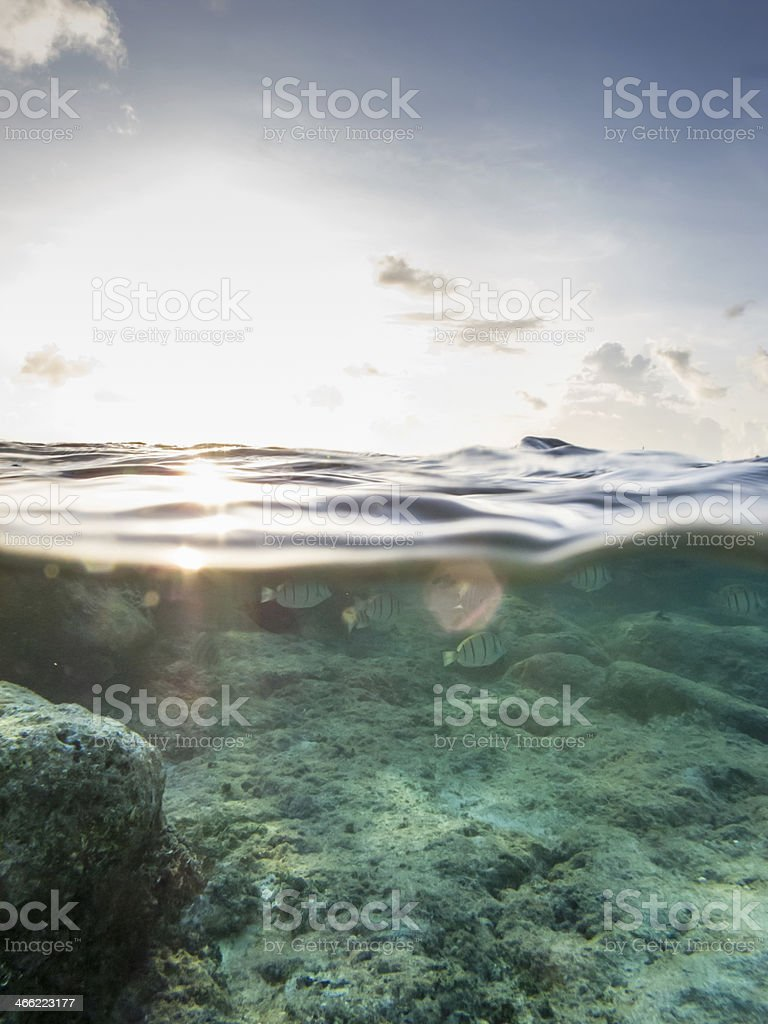 Sunset over under shot with fish, sky and clouds royalty-free stock photo