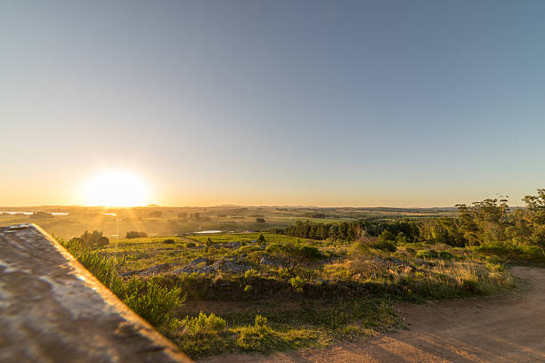 Sunset over Uruguay Vineyard stock photo