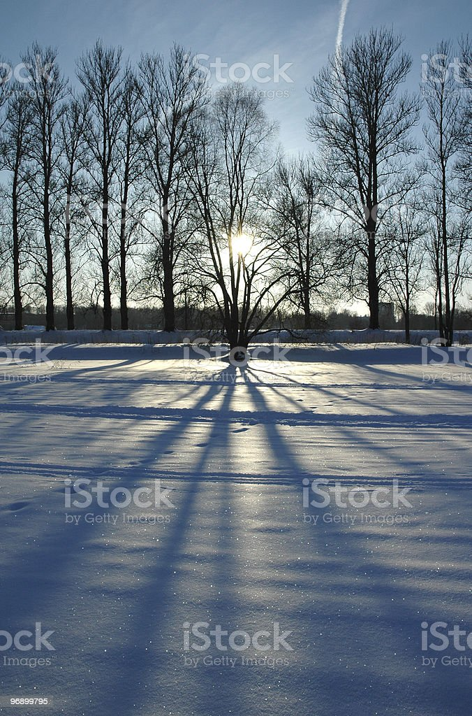 sunset over winter landscape through the tree royalty-free stock photo