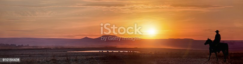 Sunset panorama in Durban countryside, cowboy with cattle on the pond