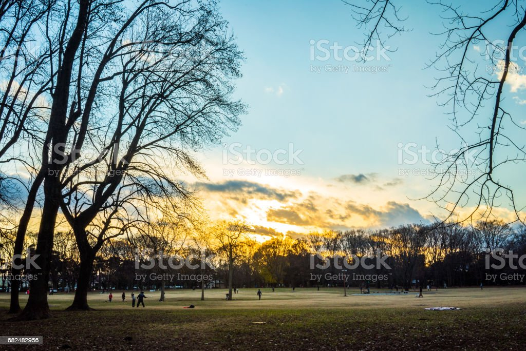 Sunset park foto stock royalty-free