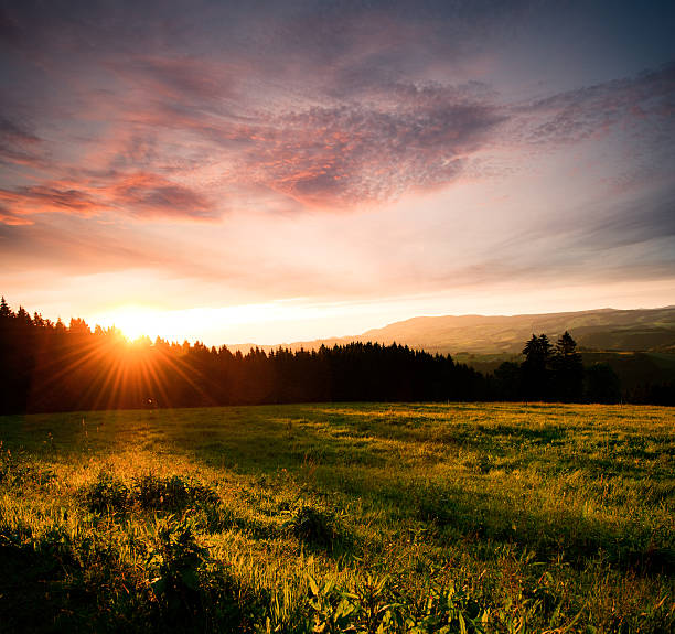 Sunset Lonely field in Black Forest (Germany) with sunset. Stitched out of 2 Pictures. black forest stock pictures, royalty-free photos & images