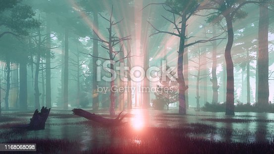Scenic sunset in a swampy pine forest with sun rays shining through the trees silhouettes at misty dawn or dusk. Dreamlike woodland scenery 3D illustration from my own 3D rendering file.