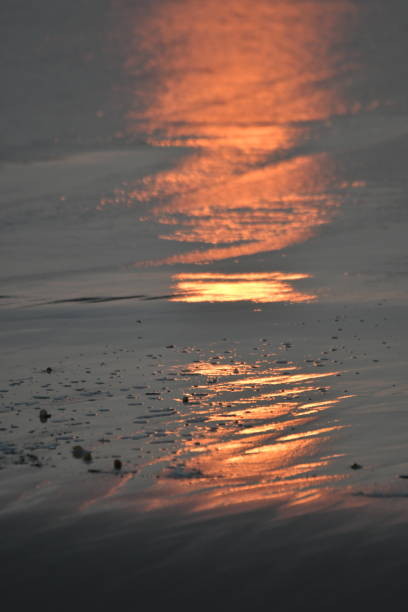 sunset reflection on sand - steven harrie stock pictures, royalty-free photos & images