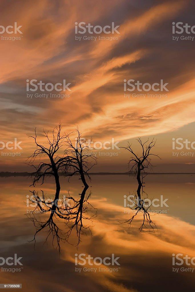 Sunset Reflection stock photo