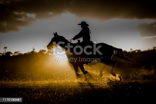 A cowgirl on her horse races across a hill at sunset.