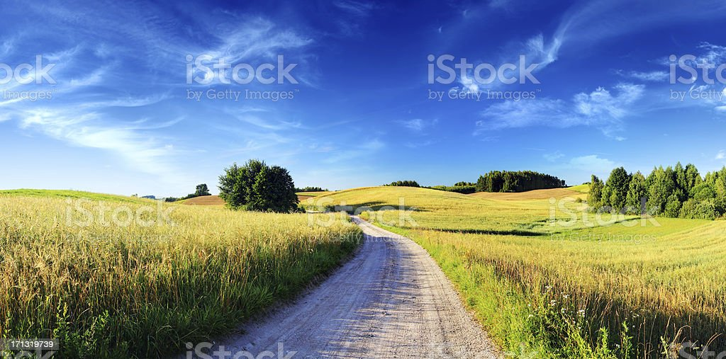 Sunset Rolling Landscape - Dirt Road, Meadows and Wheat Fields - Royalty-free Agricultural Field Stock Photo