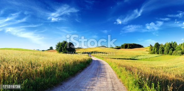 Rolling Farmland Landscape