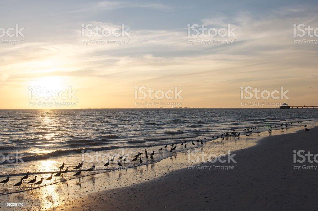 Sunset romance at the beach stock photo