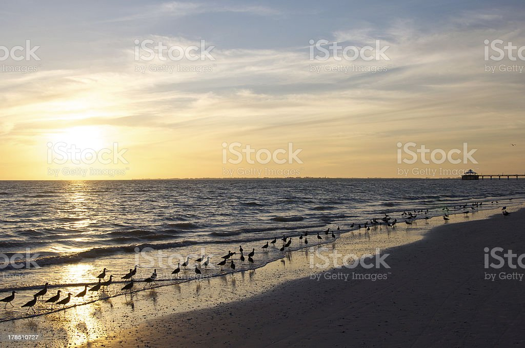 Sunset romance in Fort Meyers, Florida stock photo