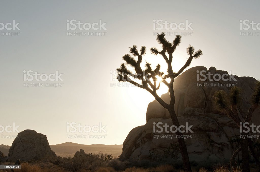 Sunset San Jacinto Mountain Palm Springs royalty-free stock photo