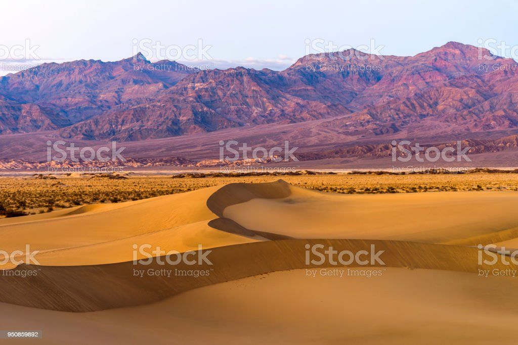 Spring Comes To Dunes >> Sunset Sand Dunes Spring Sunset View Of Smooth And Curvy Sand Dunes