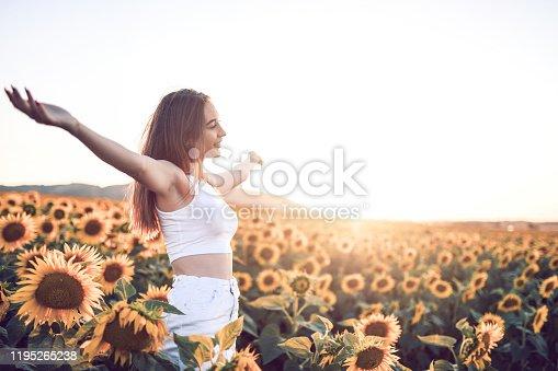 Sunset Shining Upon Beautiful Female In Sunflower Fields