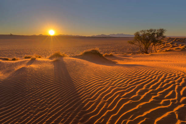 Sunset side light ripples in the sand Sunset side light ripples in the sand Namibia namib desert stock pictures, royalty-free photos & images