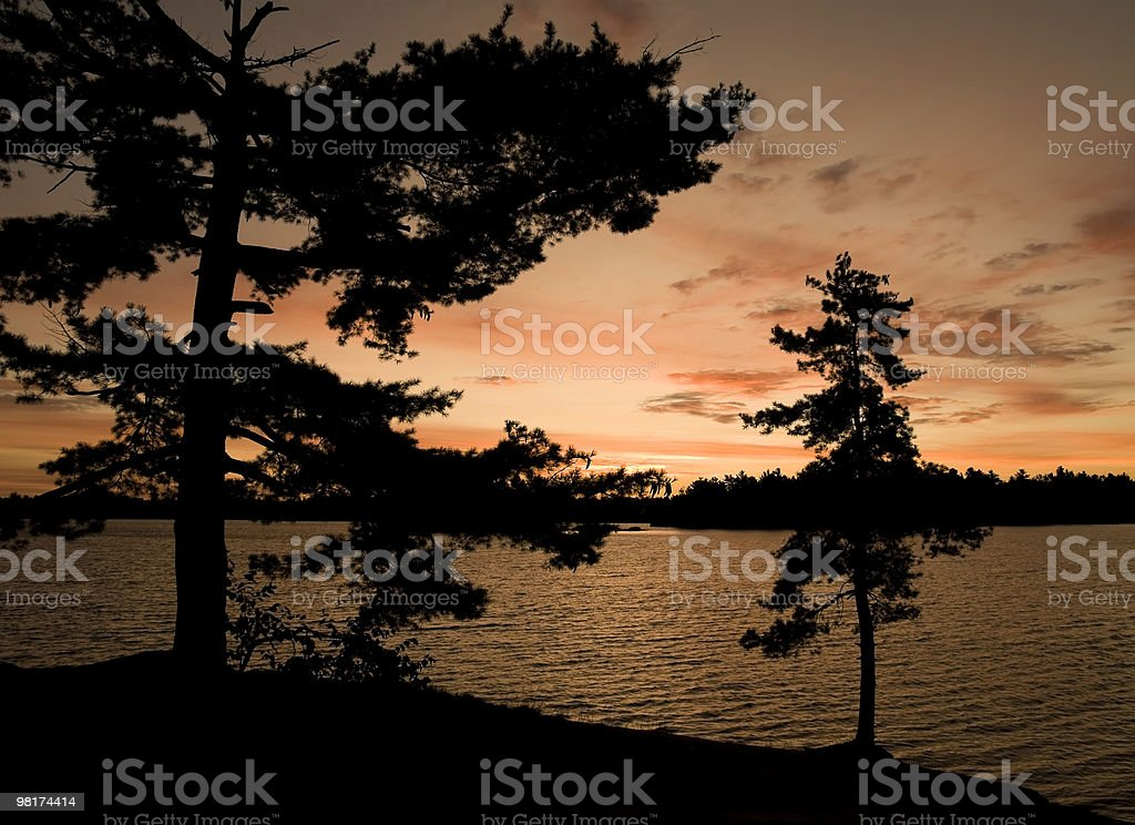 Sunset Silhouettes royalty-free stock photo