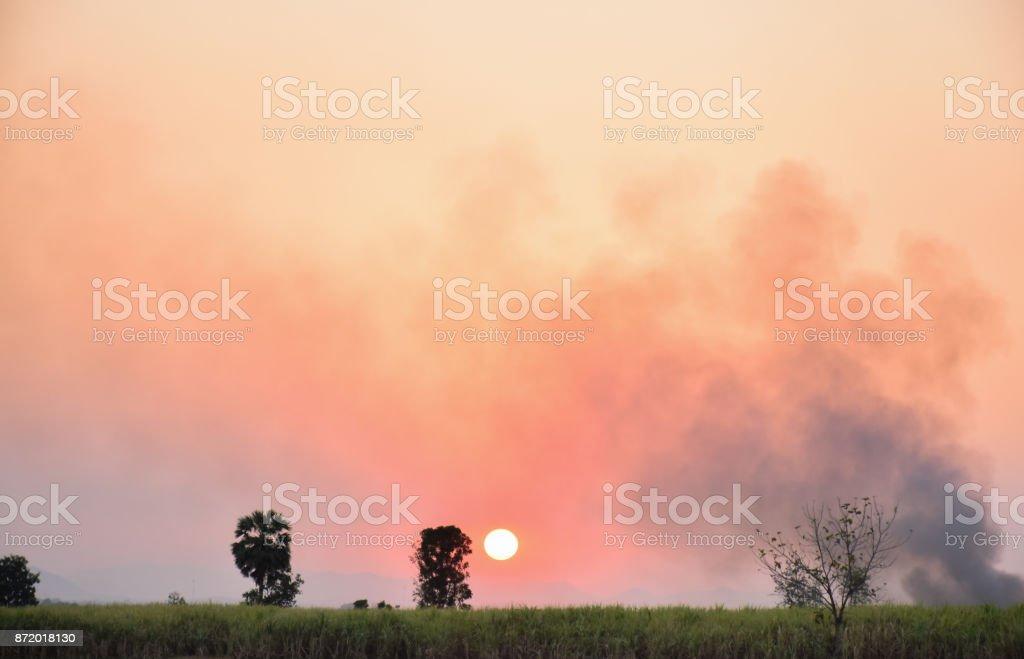 sunset sky and smog stock photo