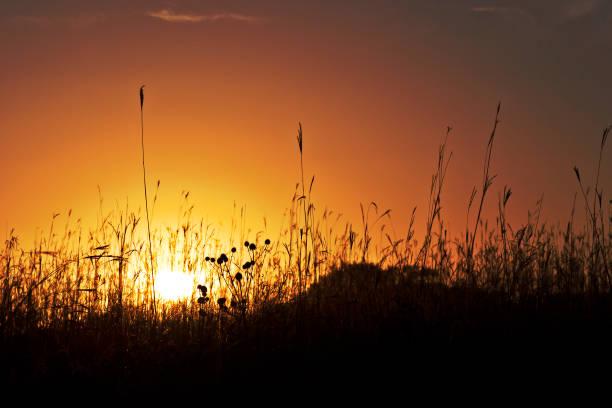 Sunset State Park stock photo