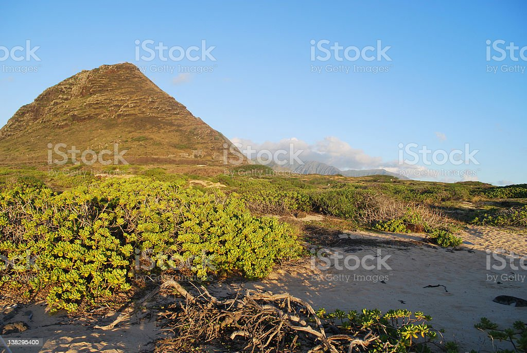 Sunset Sunlight at the Sand Dunes of Kaena Point royalty-free stock photo