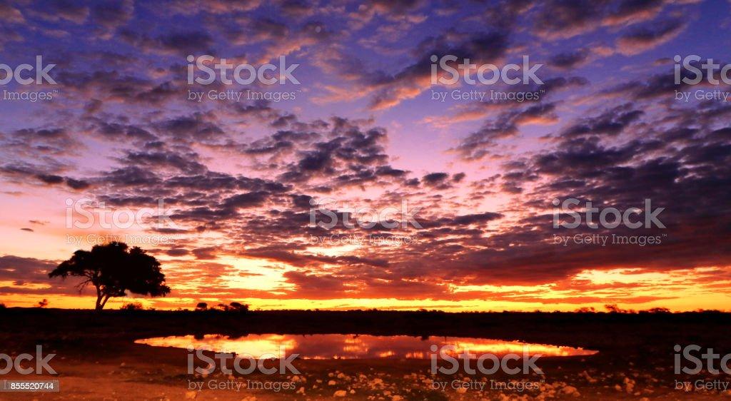 Sunset sunrise African cloudscape landscape reflection Okaukuejo waterhole savanna wilderness stock photo