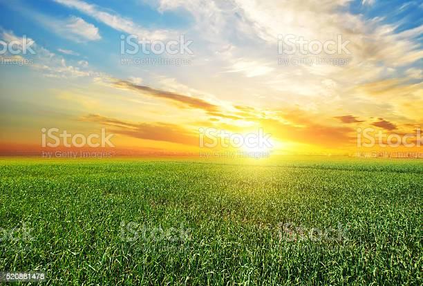 Photo of Sunset, sunrise, sun over rural countryside wheat field