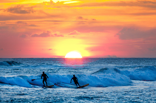 Sunset Surfer and Paddle Board on Pacific Waves, Kauai, Hawaii