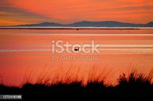 Super sunset lake view